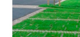 revêtement sol evergreen
